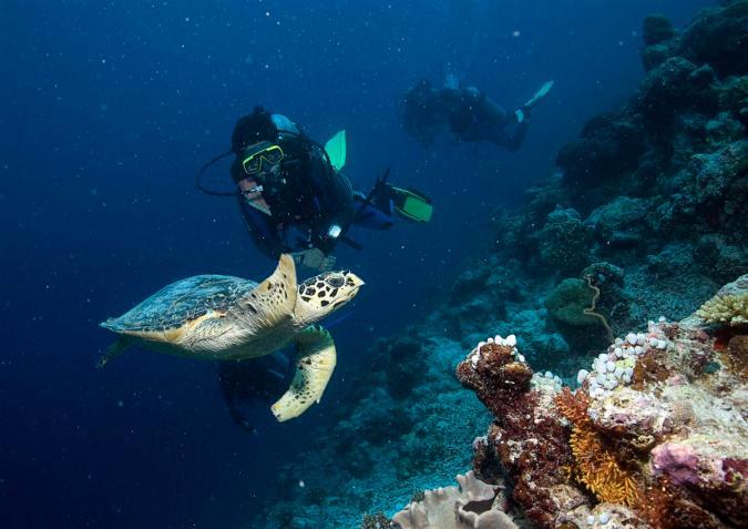 2010_Maldiven (495)